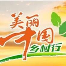 中央17农业频道广告投放服务 欢迎致电图片