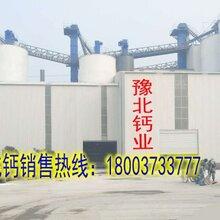 徐州高活性氢氧化钙消石灰粉图片