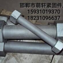 廠家專業定制雙頭螺栓 廠家直銷圖片