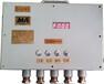 六盤水KJF5本安型通訊分站服務周到本安型通訊分站