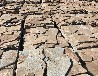 共青城乱形厂家 乱形石 找佳亿石材原产地直销价格低廉