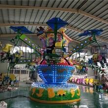 全新游乐场大型游乐设施价格 价格合理图片