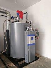 全自动燃气蒸汽锅炉型号 联系我们获取更多资料