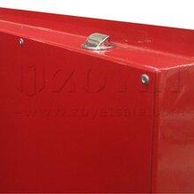 工业安全存储柜酒精存放安全柜甲苯存放安全柜图片