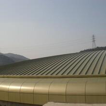 湘潭扇形弯弧铝镁锰板YX65-430型 深灰色图片