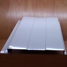 洛阳铝镁锰板彩钢板侧嵌板330型 搭叠板 专业快速图片