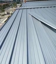 襄樊正反弯弧铝镁锰板YX65-500型 环保耐用图片