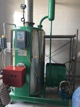 沈阳立式燃油气蒸汽发生器 欢迎在线咨询