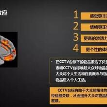 中央电视台广告10秒费用 CCTV广告 欢迎来电咨询图片