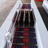 单通道洗靴机自扫式喷淋洗靴机矿用全自动洗靴机