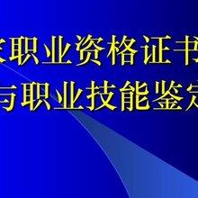 天津报考人社厅高级技师直出 高级技师资格证 量大从优图片