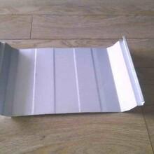 楚雄州暗扣板彩钢铝镁锰暗扣板760型销售安装 配件可售图片