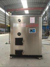 沧州知名生物质锅炉 欢迎来电洽谈