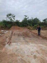 河北土壤固化剂厂家直销,泥土硬化剂图片