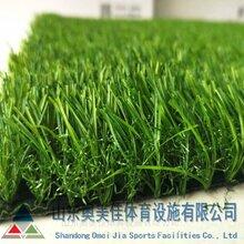 人造草坪仿真草皮围挡优质人造草坪图片