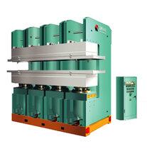 海南平板硫化机生产厂家 全系列全规格图片