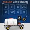 移动式汽油喷药机手推式园林喷雾器饲养场消毒高压喷雾器