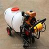 远射程推车式喷雾器大容量400升喷药机果园防虫喷雾机