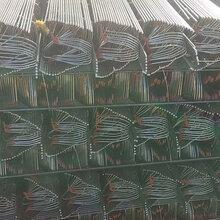 批发钢筋支架铁马凳质量可靠图片