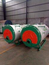 智能卧式燃气锅炉型号 欢迎来电垂询图片