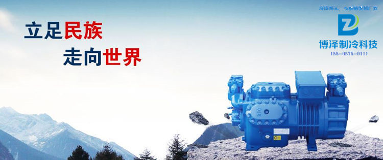 重庆大明莱福康RFC压缩机规格