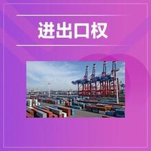 办理进出口权 天津和平区进出口登记电话 专业办理图片