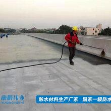 甘肃PB-1防水涂料供应商,PB1聚合物防水涂料图片
