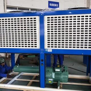 常州比泽尔V型箱式低温冷凝机组定制 厂家图片1
