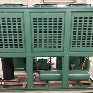 常州比泽尔V型箱式低温冷凝机组定制 厂家图片2