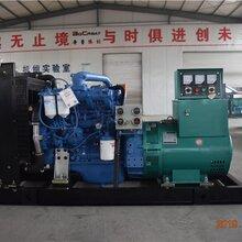 工程专用玉柴250KW柴油发电机组 玉柴发电机组销售价图片