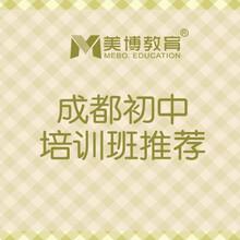 成都初中語文補習班,成都初中輔導班圖片