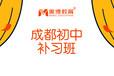 成都的初中语文辅导,成都初中补课