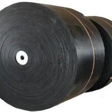 威普斯B1800mm皮带,景德镇供应STS2000B1800宽图片