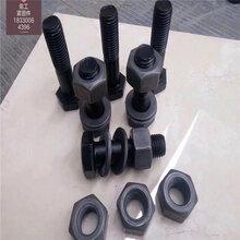 哈爾濱佑工防撞護欄連接螺栓,鋼護欄螺栓圖片