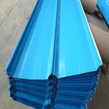 河南优质彩钢板厂优游注册平台直销图片