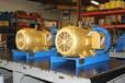 熱銷Discflo懸臂式泵
