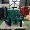 全新490柴油發動機帶皮帶輪52馬力配套泡沫熔坨機