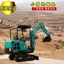 长沙原装17B小型挖掘机 小型挖土机 反铲式小挖机价格图片