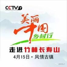 旅游美丽中国行广告报价 乡土中国 欢迎来电垂询图片