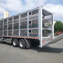 销售东风天龙9.6米畜禽运输车放心省心图片