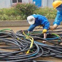 安阳电缆线出租多芯单芯铜芯软电缆图片