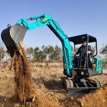 果园微型挖掘机 挖沟的迷你型挖掘机 厂家供应图片