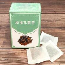 桦褐孔菌茶生产厂图片