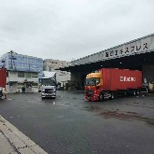 揭阳日本海运物流 日本海运物流 正规运营