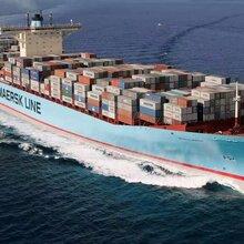 珠海日本海运物流 日本海运物流 专业物流团队
