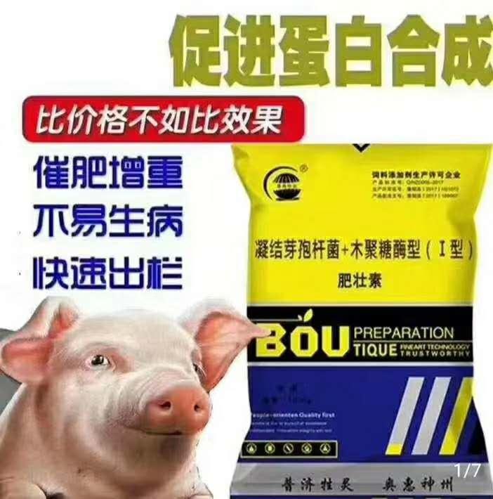 杭州熱門增肥