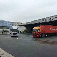 台州日本海运物流 日本海运物流 专注物流服务