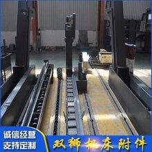 双狮数控链板排屑机专业生产商图片