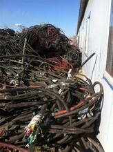 魏縣新電纜回收的價格圖片