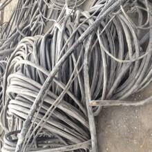 復興區回收電纜公司的價格圖片